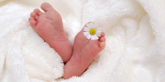 ויטמין K בלידה